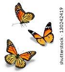 three orange butterflies ... | Shutterstock . vector #130242419