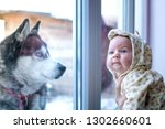 a black white husky with blue... | Shutterstock . vector #1302660601