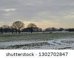 Snowy Field Niederrhein...