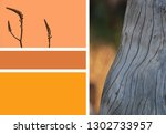 textured wood with color palette | Shutterstock . vector #1302733957