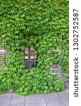 window in ivy covered wall   Shutterstock . vector #1302752587