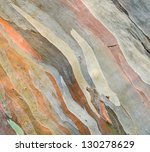 Extraordinary Colored Bark Of...