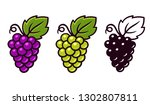 grapes icon set  red  white and ... | Shutterstock . vector #1302807811