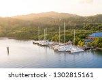 ambient sunset at mahogany bay  ... | Shutterstock . vector #1302815161