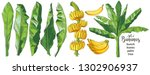 a set of vector tropical... | Shutterstock .eps vector #1302906937