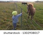 little baby feeds grass unique... | Shutterstock . vector #1302938017