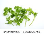 sprouts for salad.fresh... | Shutterstock . vector #1303020751