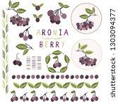 realistic aronia berry vector... | Shutterstock .eps vector #1303094377