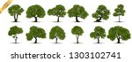 collection of tree trees... | Shutterstock .eps vector #1303102741