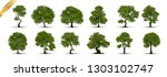 collection of tree trees... | Shutterstock .eps vector #1303102747