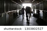young jockey walking with a... | Shutterstock . vector #1303802527