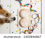 dog's snout and carnival donut... | Shutterstock . vector #1303846867