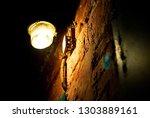 lantern on the street at night...   Shutterstock . vector #1303889161