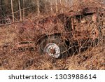 abandoned and neglected vehicle ...   Shutterstock . vector #1303988614