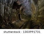 slavo ovce  slovakia  ... | Shutterstock . vector #1303991731