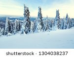 snow covered trees and a view...   Shutterstock . vector #1304038237