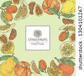 background with citrus fruitst  ... | Shutterstock .eps vector #1304101267