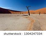 dead vlei  namib naukluft... | Shutterstock . vector #1304247334