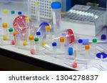 glass tubes on the storefront.... | Shutterstock . vector #1304278837