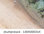 amazing beach and waves from... | Shutterstock . vector #1304300314