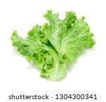 lettuce isolated on a white... | Shutterstock . vector #1304300341