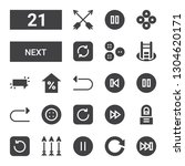 next icon set. collection of 21 ...