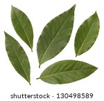 Bay Leaves Isolated On White...