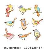 collection of birds in... | Shutterstock .eps vector #1305135457