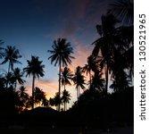 Palms at sunset at thailand resort - stock photo
