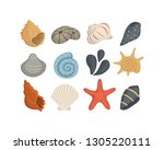 sea shell vector icons in...   Shutterstock .eps vector #1305220111