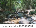 stone and water flow | Shutterstock . vector #1305313831