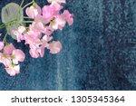 sweet pea flower | Shutterstock . vector #1305345364