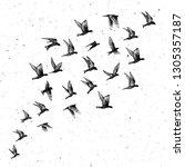 set of black hand drawn strokes ... | Shutterstock .eps vector #1305357187