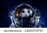 first trip to space. mixed media | Shutterstock . vector #1305373747
