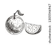 beautiful vector hand drawn... | Shutterstock .eps vector #1305546967