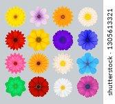 beautiful different daisy ... | Shutterstock .eps vector #1305613321