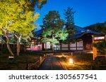 illuminated path at the autumn... | Shutterstock . vector #1305657541