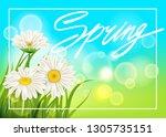 spring daisies background fresh ...   Shutterstock .eps vector #1305735151