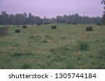 empty countryside landscape in... | Shutterstock . vector #1305744184