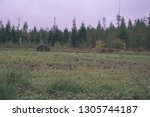empty countryside landscape in... | Shutterstock . vector #1305744187