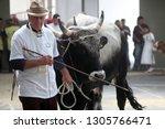 bjelovar  croatia   september ... | Shutterstock . vector #1305766471