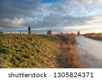 woman cycling in the dutch... | Shutterstock . vector #1305824371