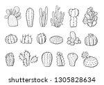 cactus plants set. vector hand...   Shutterstock .eps vector #1305828634