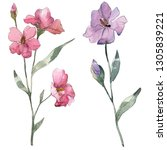 pink and purple flax floral... | Shutterstock . vector #1305839221