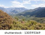 Giant Sequoia National Monumen...