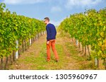 young well dressed winemaker... | Shutterstock . vector #1305960967