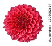Flower Crimson Dahlia Isolated...