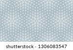 abstract geometric pattern.... | Shutterstock . vector #1306083547