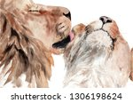 Watercolor Painting Lions...