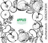 apple hand drawn illustration.... | Shutterstock .eps vector #1306229104